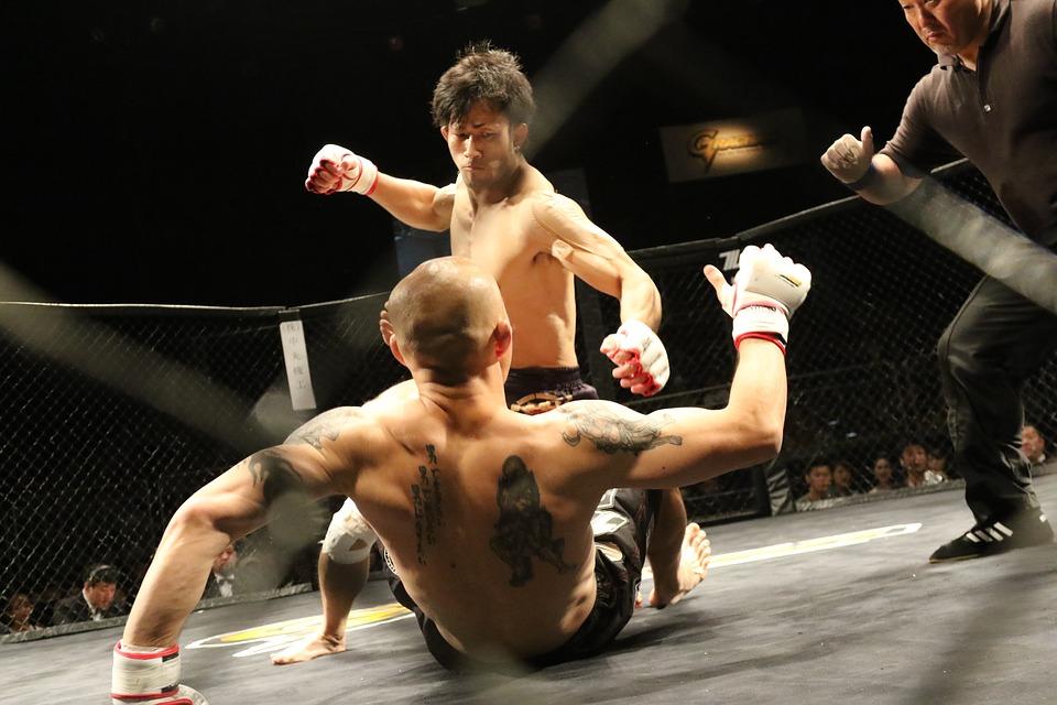MMA Photo by Maza Fight em Artigo de Jogo do Pau Cascais